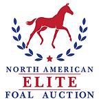 NAEFA Logo cropped.png