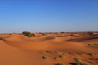 Désert plaine des gazelles trek au Maroc avec Amouddou trekking