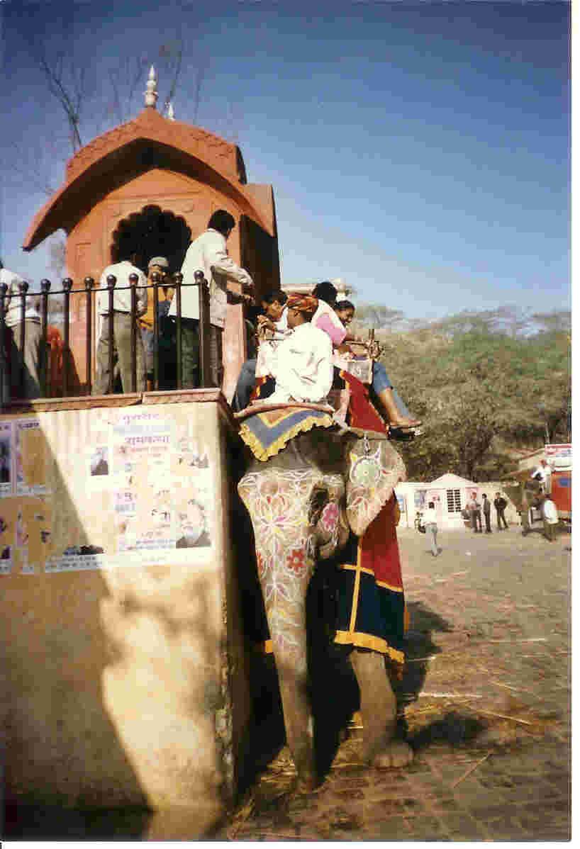Elephant Stop, Jaipur-Amber Fort
