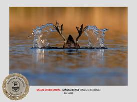 sopianae_3rd_catalogue-29a_web.jpg