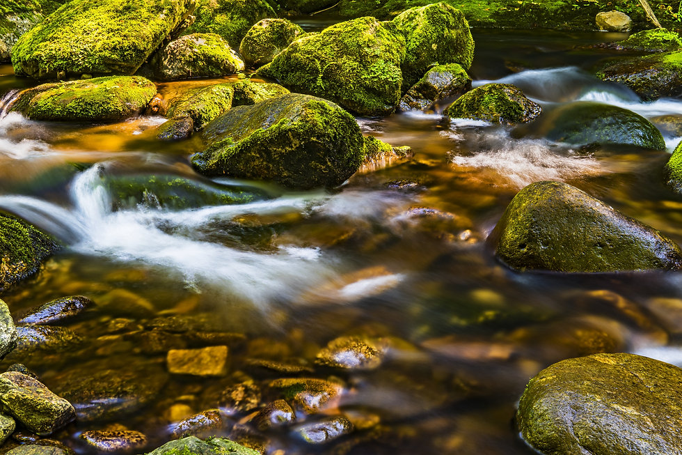 timelapse-photography-of-river-flowing-t