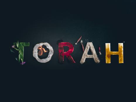 Torah Bits