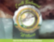 salt logo.jpg