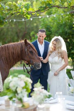 Wedding Oasis Finals 0051
