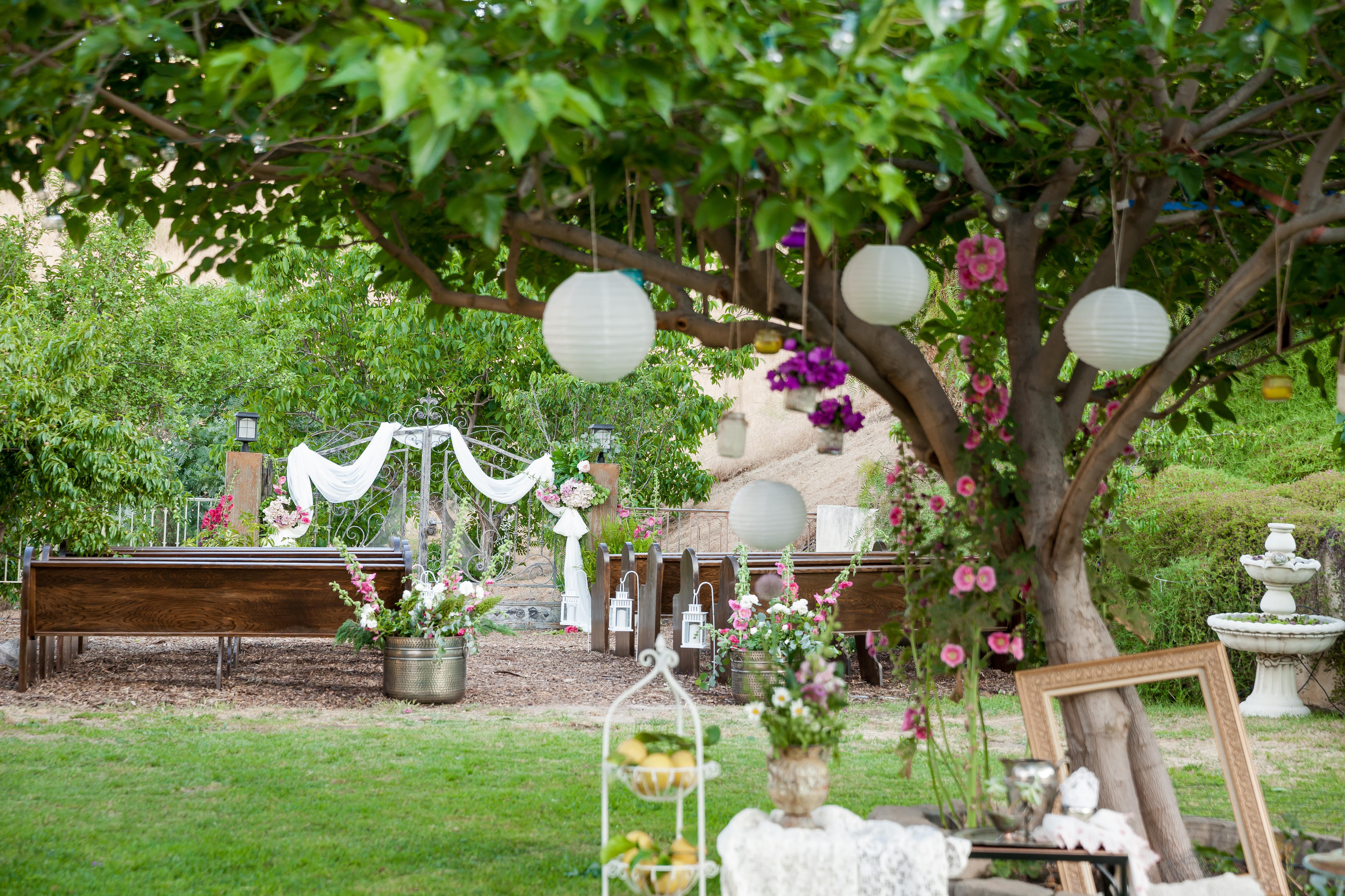 Wedding Oasis Finals 0125