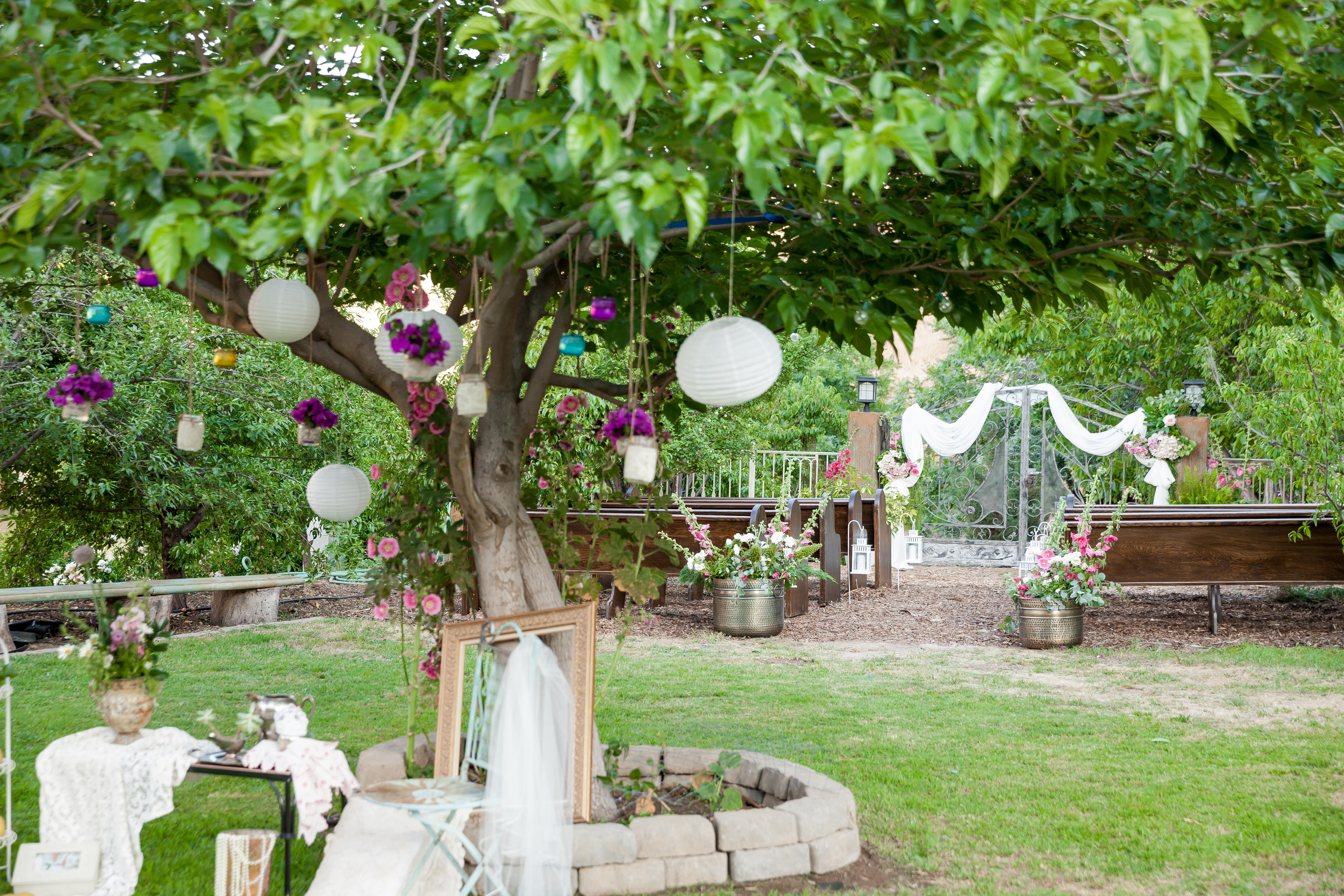 Wedding Oasis Finals 0127