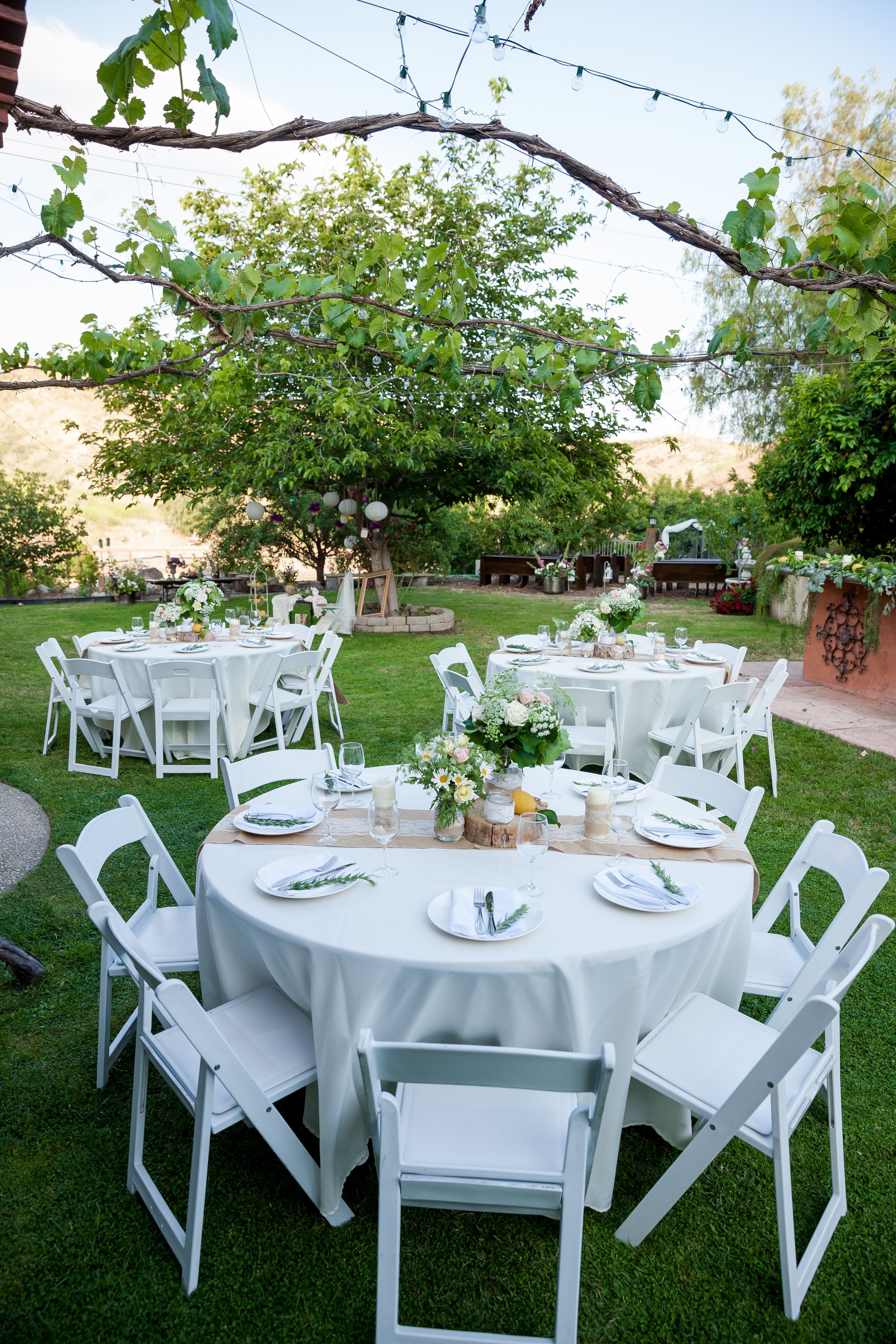 Wedding Oasis Finals 0114