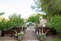 Wedding Oasis Finals 0117