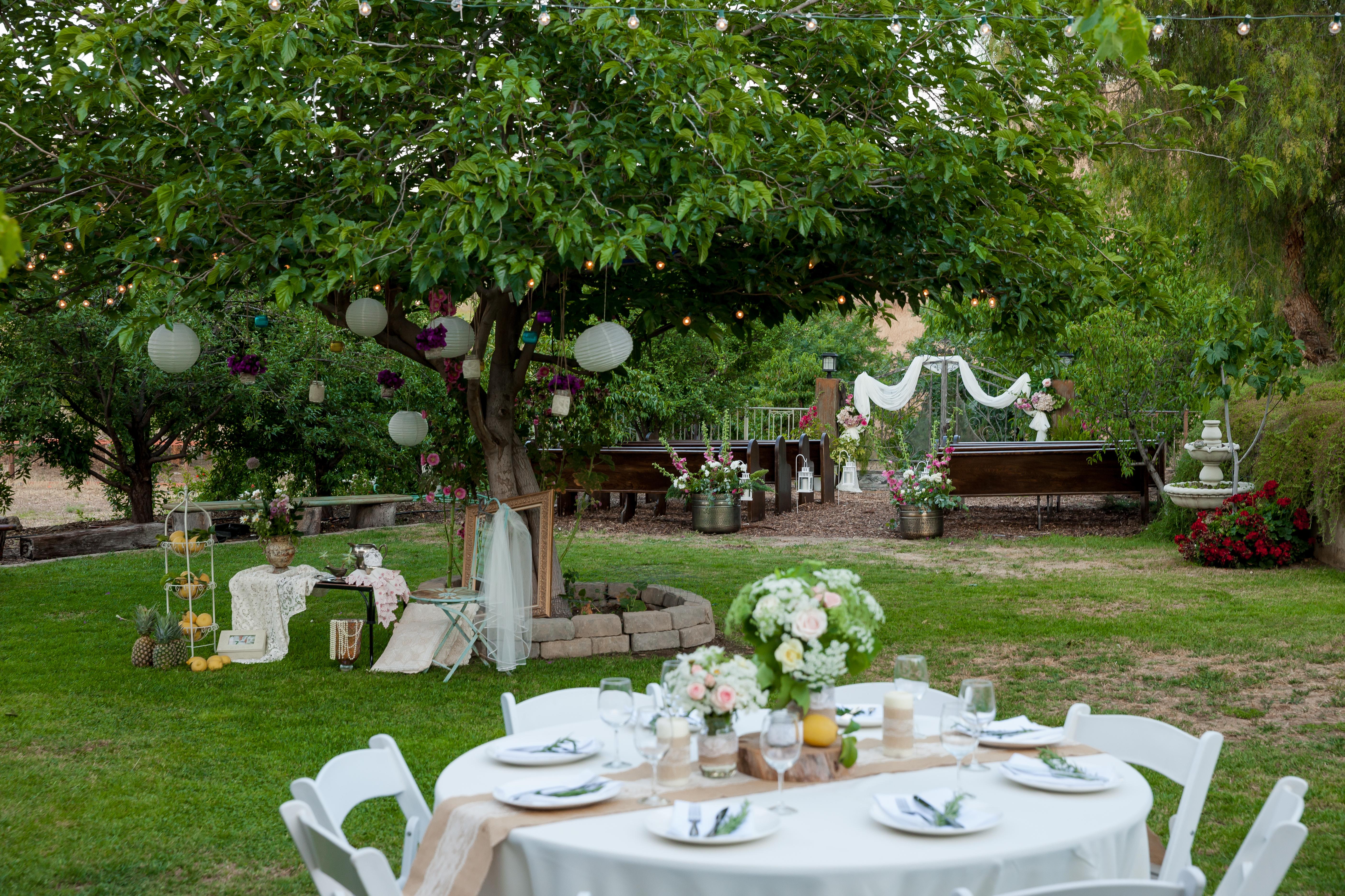 Wedding Oasis Finals 0246