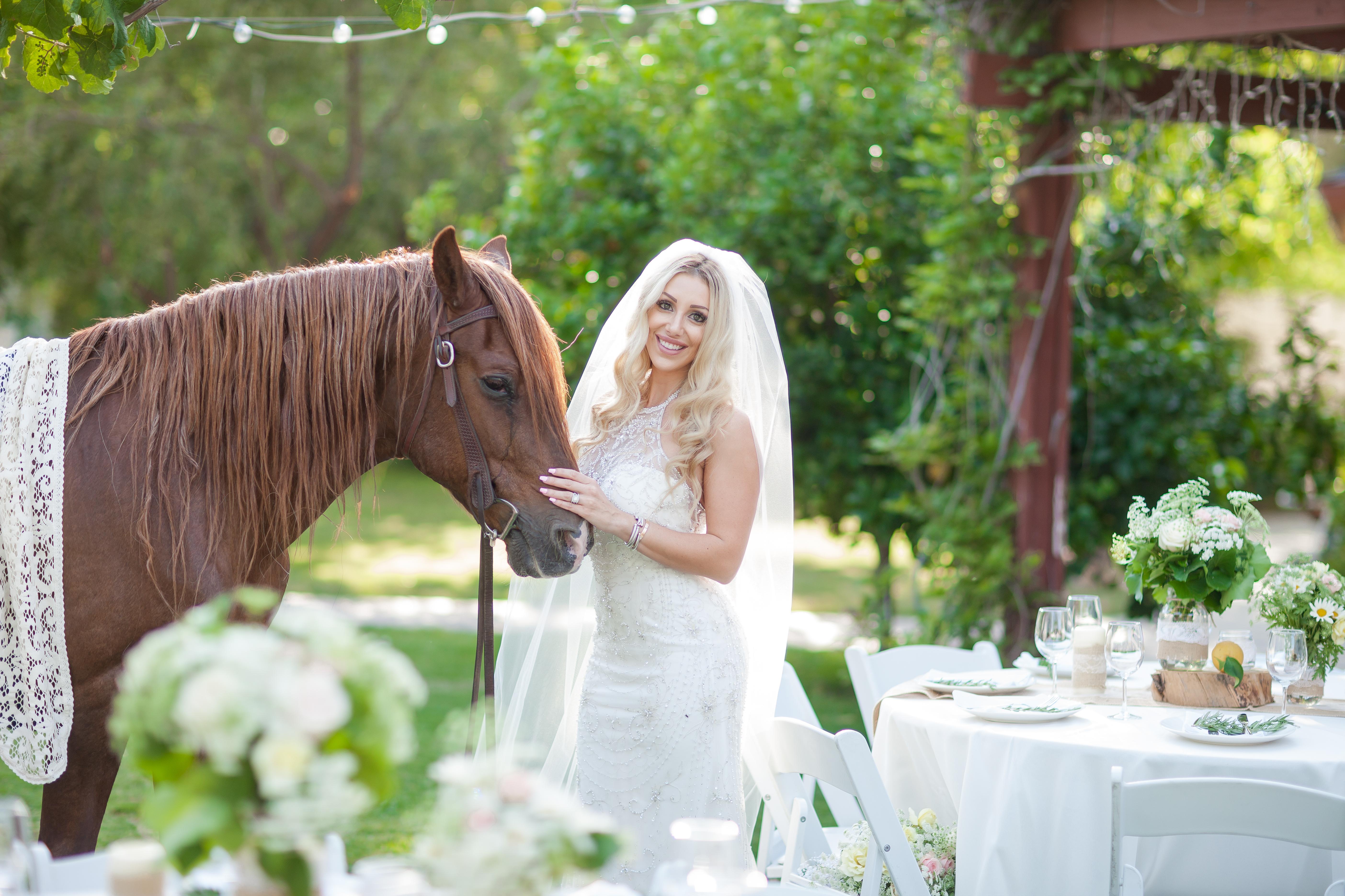 Wedding Oasis Finals 0072