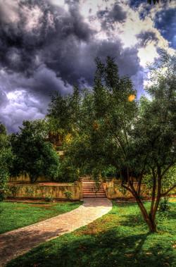 Emily Back yard 3_tonemapped