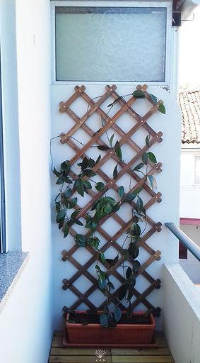 jardim vertical na varanda - depois