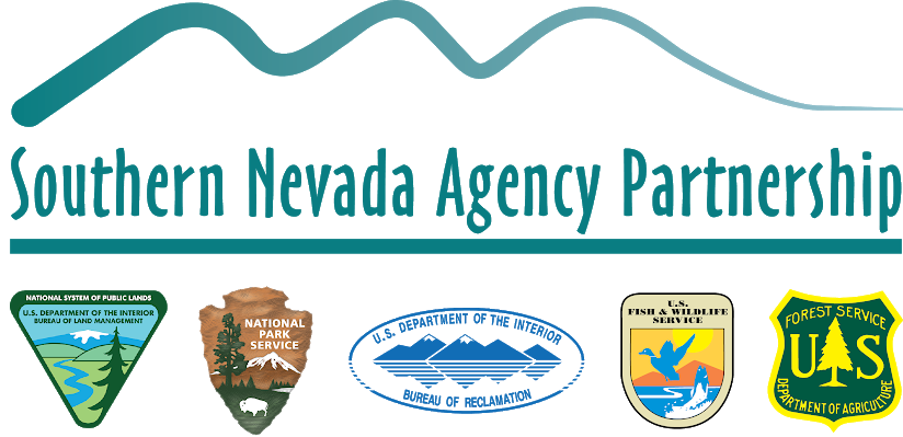 Southern Nevada Agency Partnership