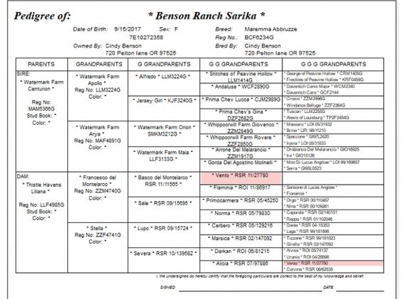 Sarika-pedigree-700x544.png