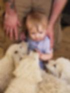 Levi w BB pups 7-4-19.jpg