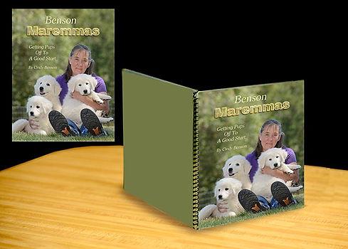 spirel book sample _1a ^^^^.jpg