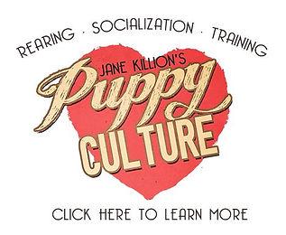 puppy-culture-trainer.JPG