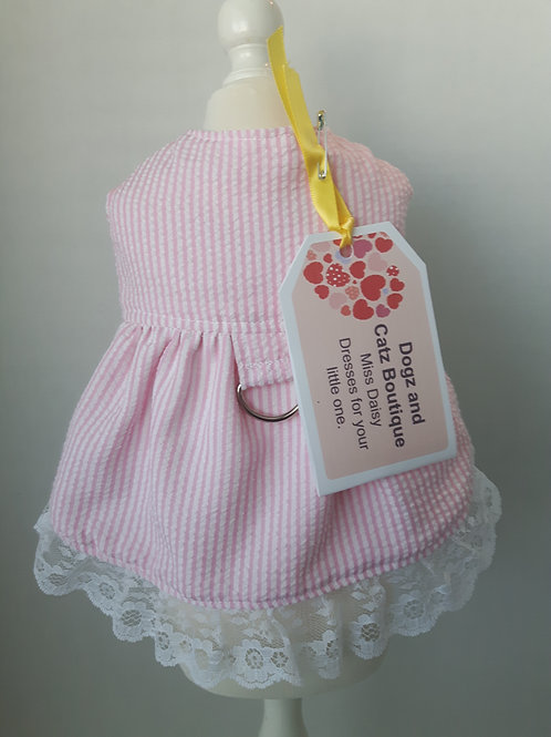 Little Sweet Pea Dress - Small