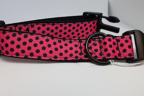 Collars for the puppies - Small