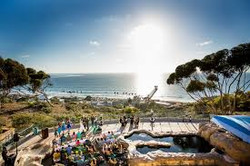 Aerial view of ceremony near tide pool_images