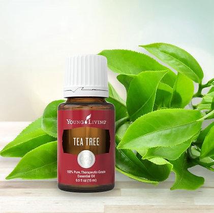 Aceite Esencial de Árbol de Té 5 ml