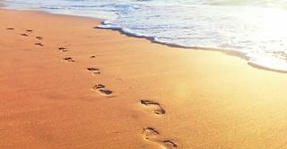 10491-footprints.jpg