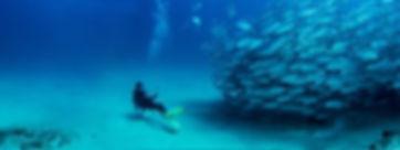 cabo-pulmo-snorkel-expedition-cabo-adven