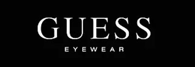 guess logo.webp