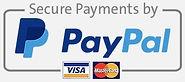 Paypal logo-min.jpg