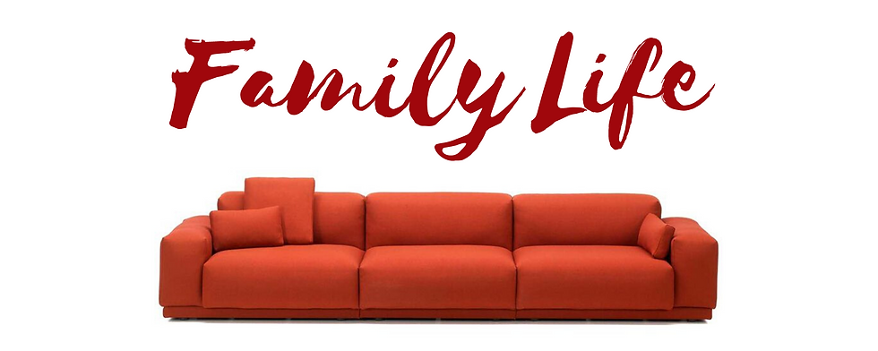 Copy of Family Life.png