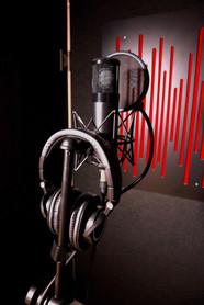 Microphone - Slate VMS