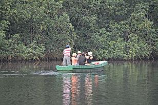 Mangrove Malanza Tour