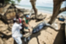 Surfar no paraiso sao tome du site mensh