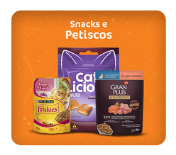 Snacks e Petiscos
