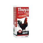 Thuya Avícola