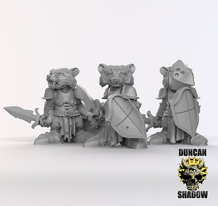 Racoon folk Paladins (pre supported)