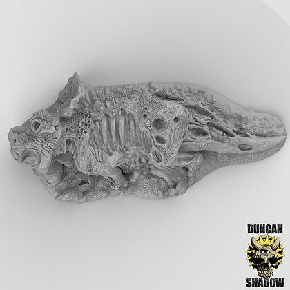 Dead Triceratops