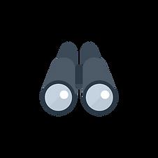 Binoclu icon-02.png