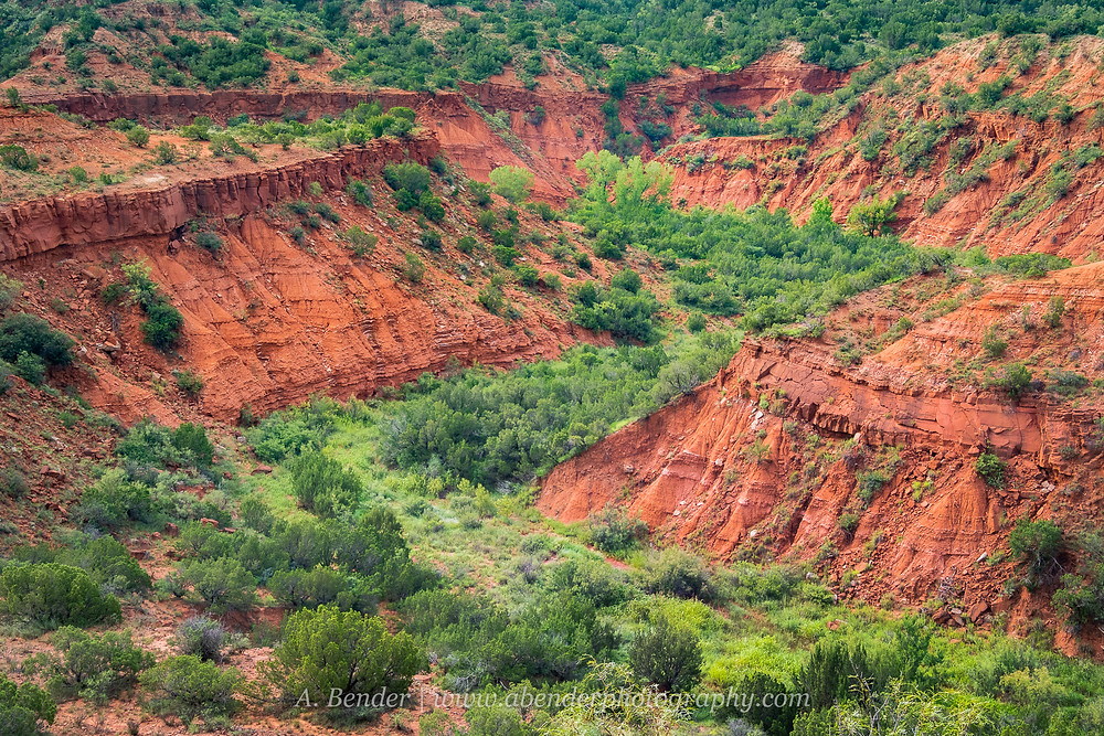 Caprock Canyon Escarpment desert landscape canyon view in northern Texas | A Bender Photography LLC
