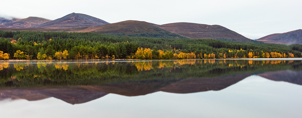 Autumn reflections in loch, Cairngorms National Park, Scotland