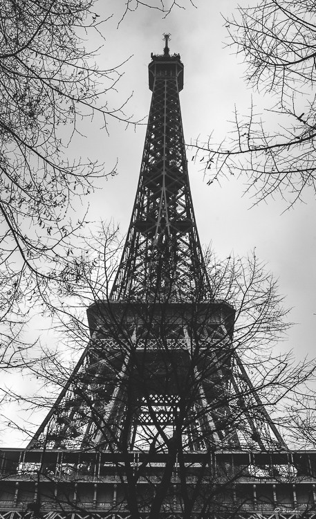 Winter at the Eiffel Tower