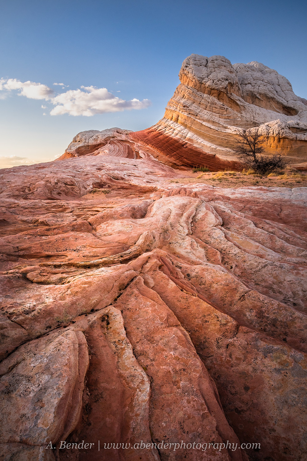 Unique orange and white sandstone formations at sunset in White Pocket, Northern Arizona   A Bender Photography LLC