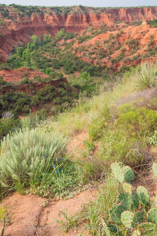 Caprock Canyon Escarpment desert landscape | A Bender Photography LLC