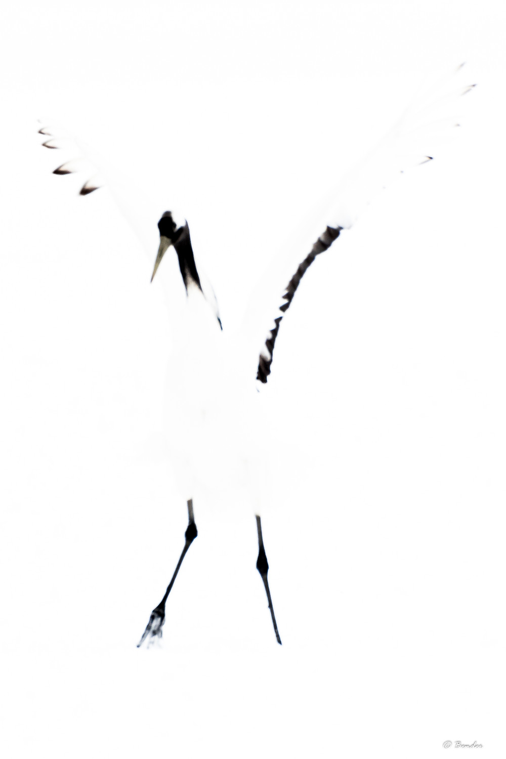 Abstract crane image