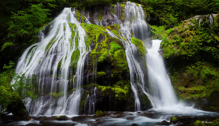 Upper Panther Creek Falls