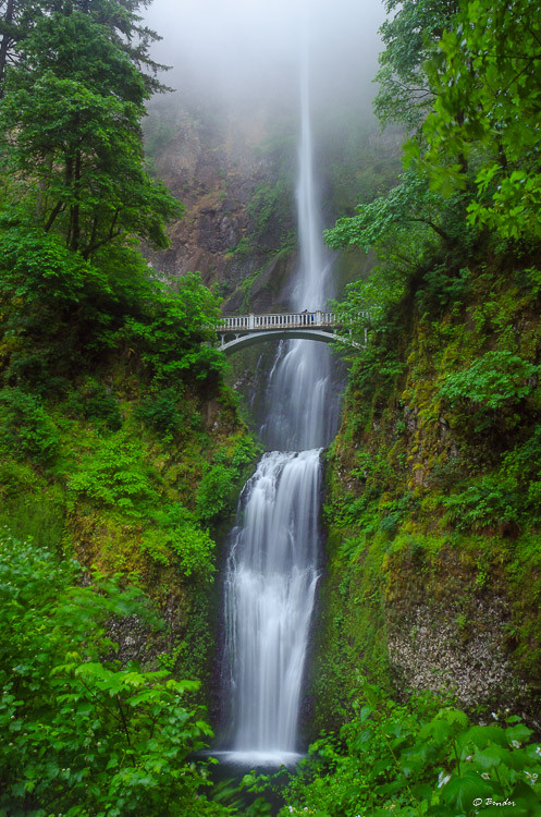 Multnomah Falls on a rainy day in spring  2016