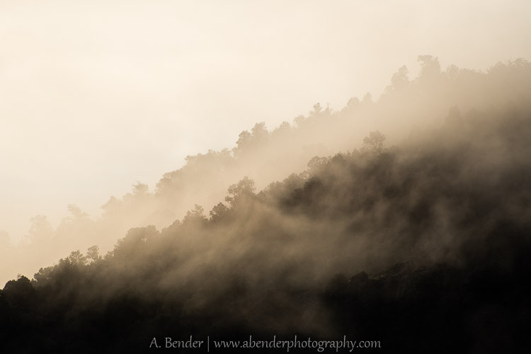 Morning Mists over Spring Valley