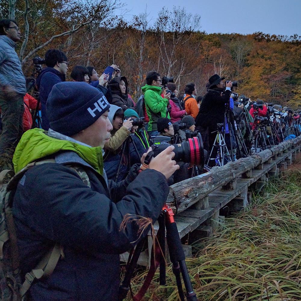 Photographer Mass