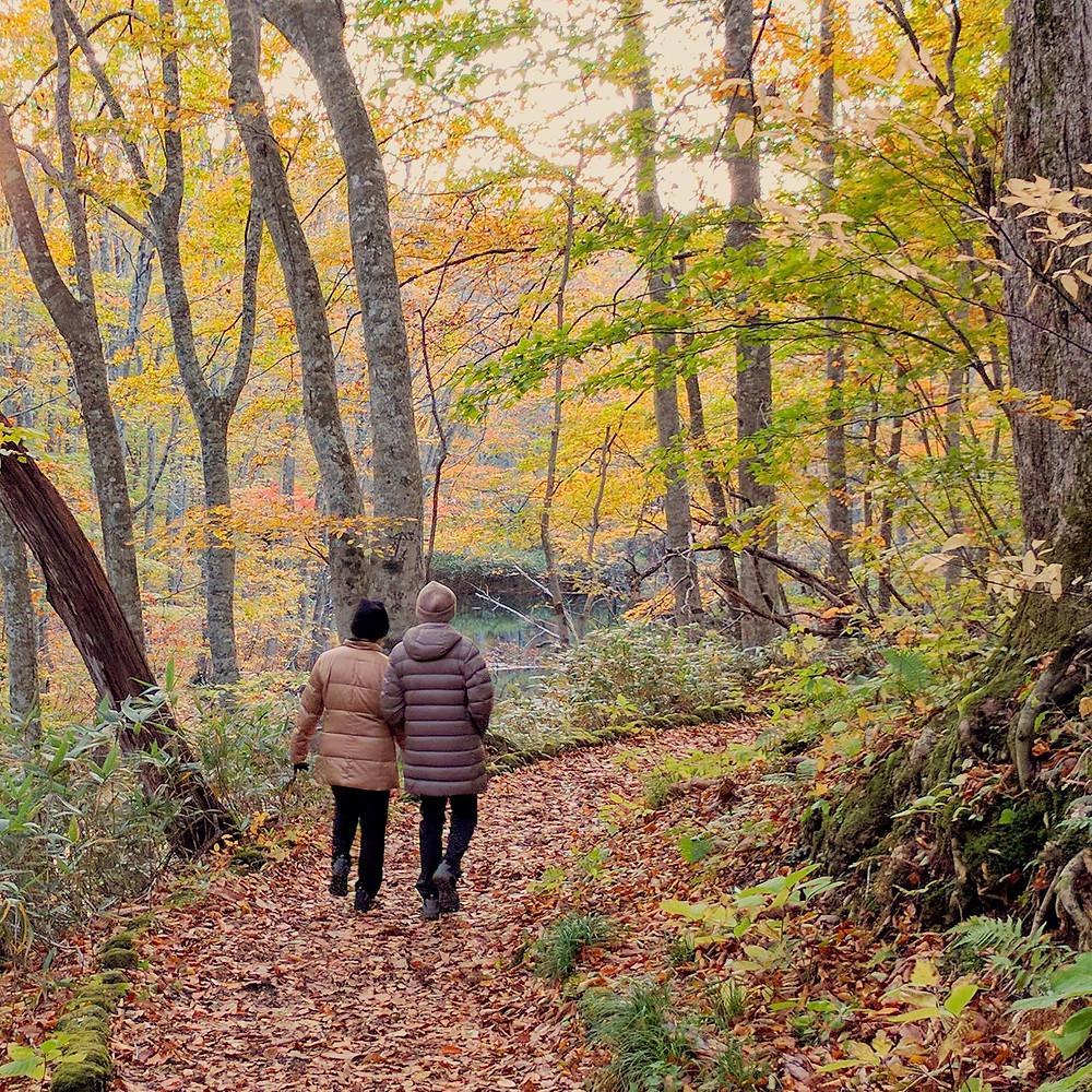 Couple walking down trail