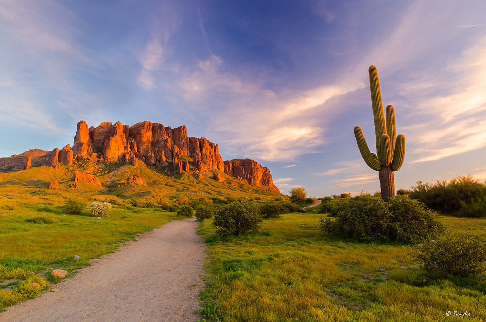 "Photo: ""Sunset over the Superstitions and Saguaro"" Lost Dutchman State Park, AZ"